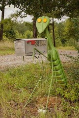 http://www.designswan.com/archives/42-cool-and-unusual-mailbox-designs.html
