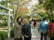 Tea Ceremony Garden