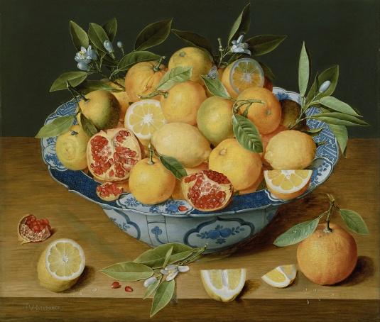 Jacob_van_Hulsdonck_(Flemish_-_Still_Life_with_Lemons,_Oranges_and_a_Pomegranate_-_Google_Art_Project
