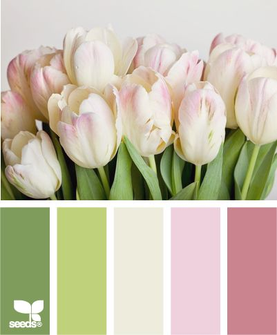 Tulip Tones