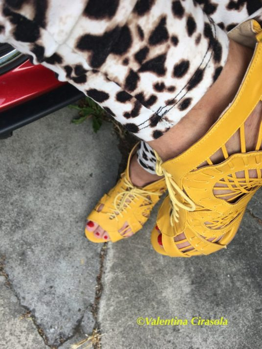 Cheetah and Yellow Shoes