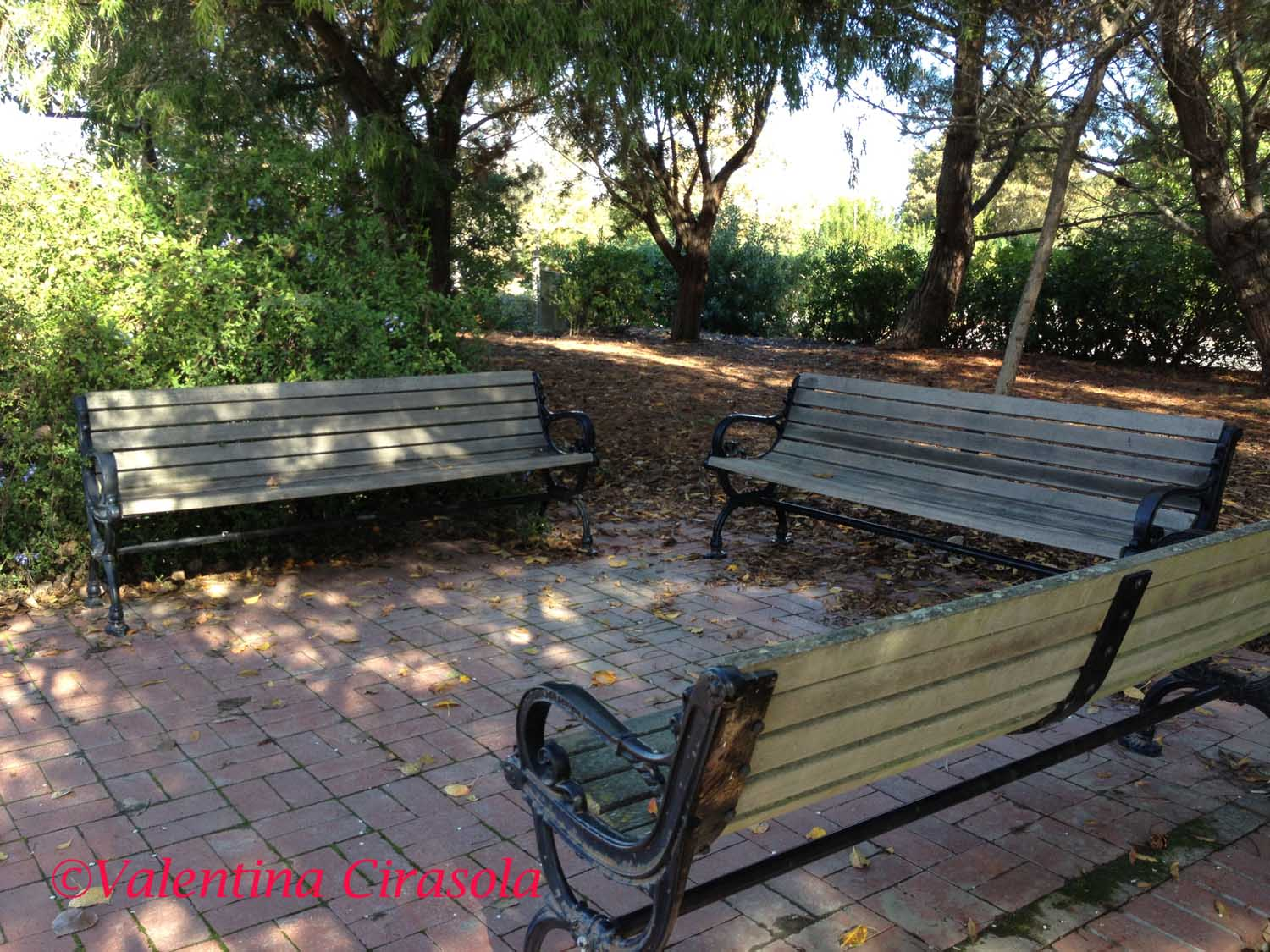 Solitaire Benches